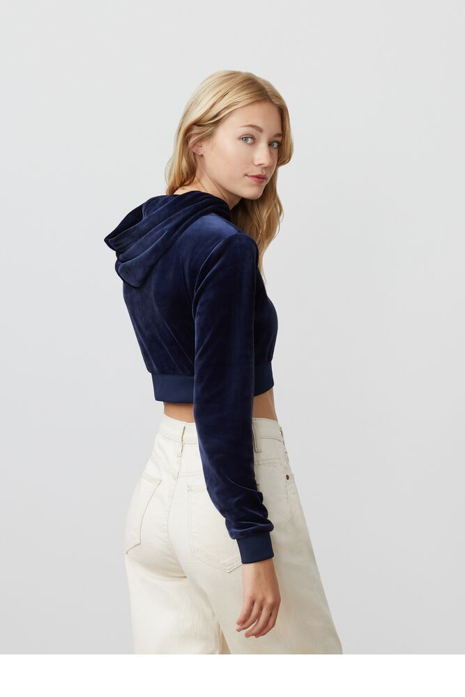 lou cropped velour hoodie in webimage-C5256F81-5ABE-4040-BEA94D2EA7204183