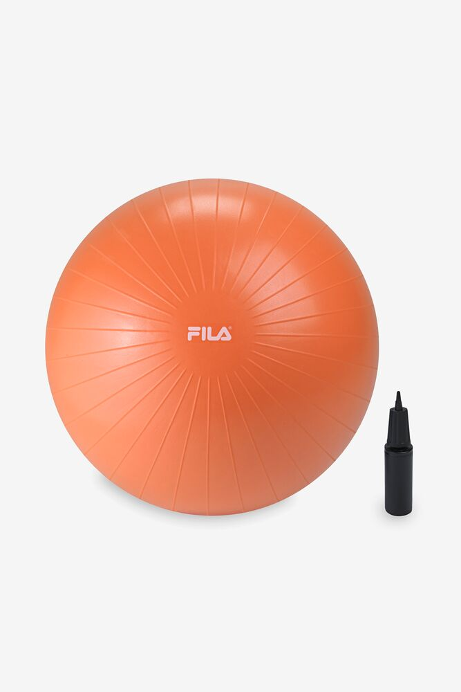 Stability Workout Ball With Pump 65cm in webimage-5F4B72B4-92C5-4364-983BDA4802383A85