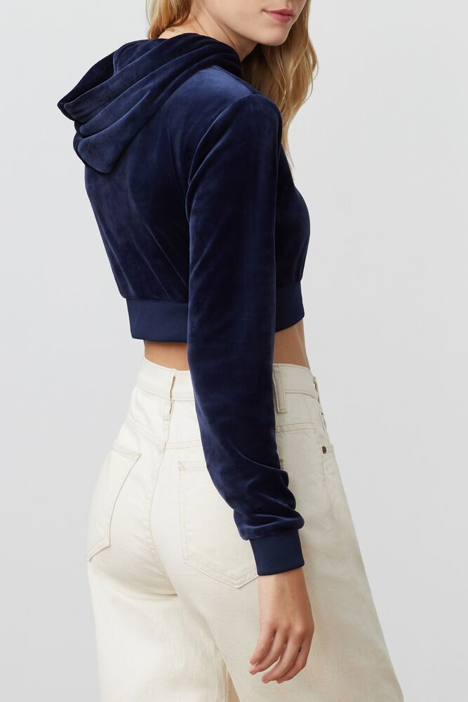 lou cropped velour hoodie in webimage-C5256F81-5ABE-4040-BEA94D2EA7204183