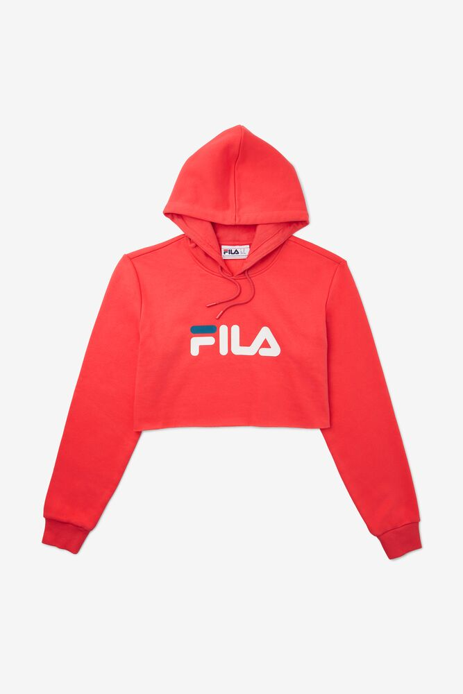 Lalage Cropped Hoodie in webimage-3C8CF6C9-EA53-4127-A342F18A801A7289